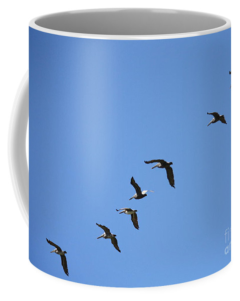 Pelicans Coffee Mug featuring the photograph Pelicans All In A Row by Carol Groenen