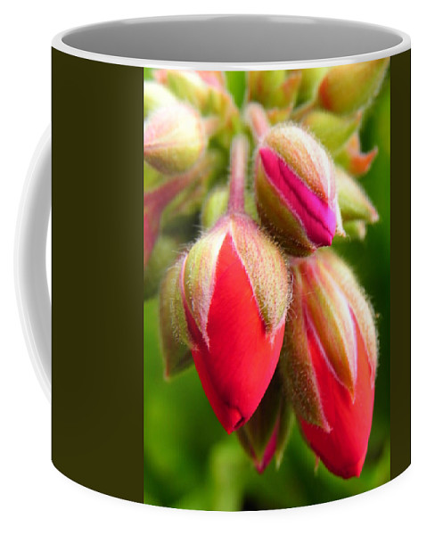 Buds Coffee Mug featuring the photograph Pending Beauty by Deb Halloran