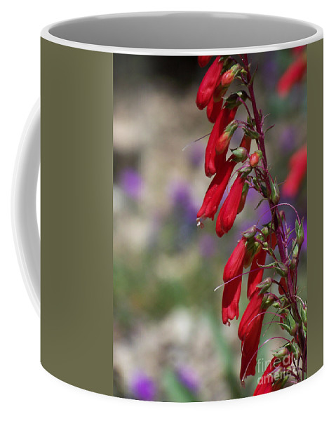 Flowers Coffee Mug featuring the photograph Penstemon by Kathy McClure