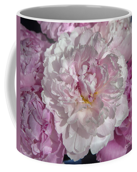Spring Coffee Mug featuring the photograph Peony 6857 by Terri Winkler
