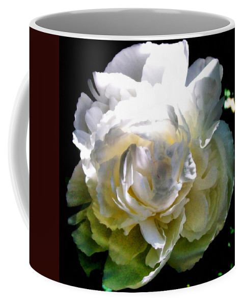 White Peony Coffee Mug featuring the photograph Peony In Morning Sun by Michelle Calkins