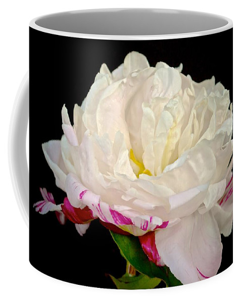 Flower Coffee Mug featuring the photograph Peony In Repose by Kristina Deane