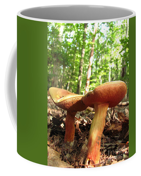 Peppery Bolete Images Peppery Bolete Prints Spicy Mushroom Pics Spicy Fungi Edible Fungi Edible Mushrooms Spore Prints Forest Fungi Maryland Mushrooms Forest Ecosystem Biodiversity Woodland Ecology Wilderness Preservation Habitat Conservation Coffee Mug featuring the photograph Peppery Bolete by Joshua Bales