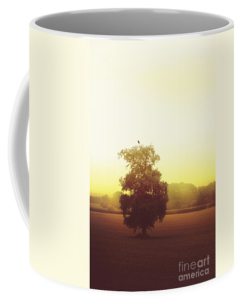 Tree Coffee Mug featuring the photograph Perched On Top by Margie Hurwich