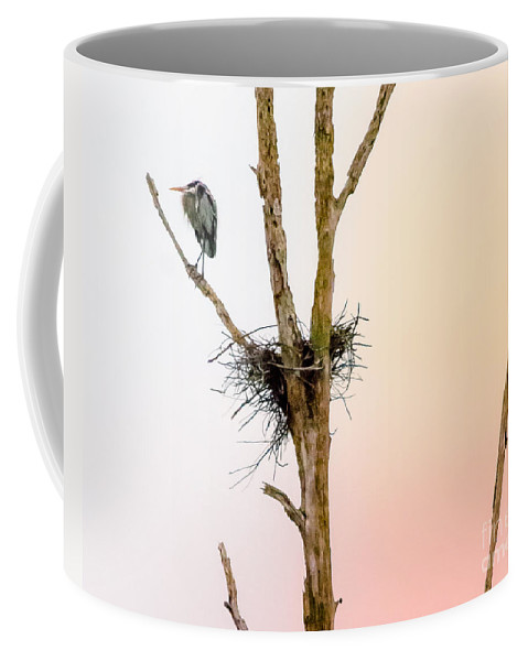 Perch Coffee Mug featuring the photograph Perched Up High by Scott Hervieux
