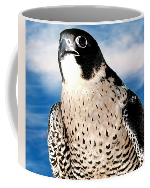Peregrine Falcon Coffee Mug featuring the photograph Peregrine Falcon by Rose Santuci-Sofranko