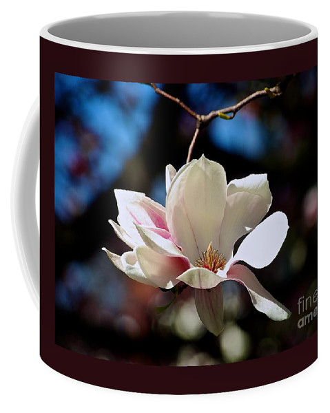 Color Flower Coffee Mug featuring the photograph Perfect Bloom Magnolia by Frank J Casella