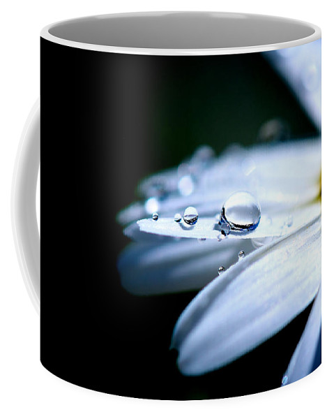 Simple Coffee Mug featuring the photograph Perfect Drop by Lisa Knechtel