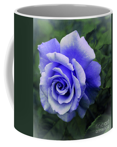 Periwinkle Rose Coffee Mug featuring the photograph Periwinkle Rose by Barbara Griffin