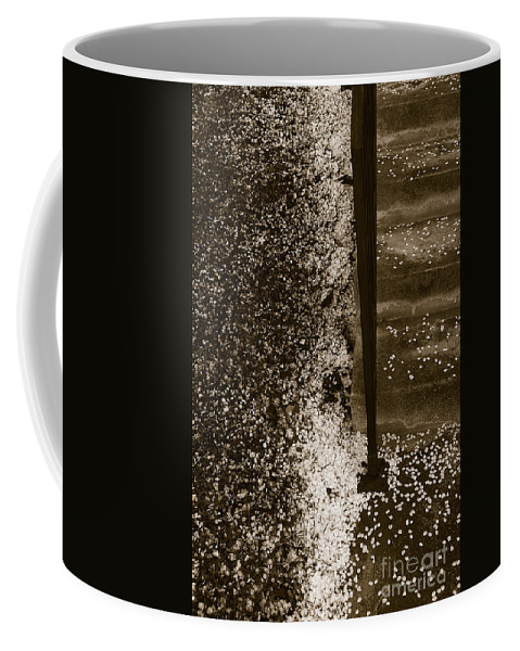 Nature Coffee Mug featuring the photograph Petal Snow by Fei A