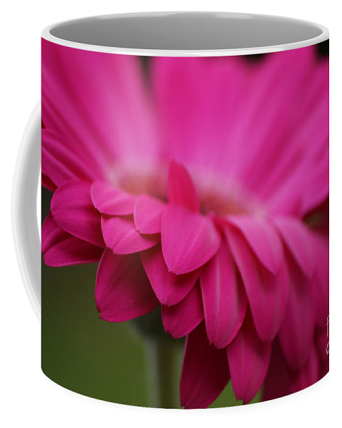 Pink Coffee Mug featuring the photograph Petals Pink by Carol Lynch