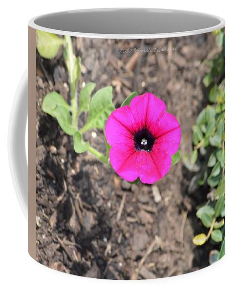 Petunia Coffee Mug featuring the photograph Petun by Sonali Gangane