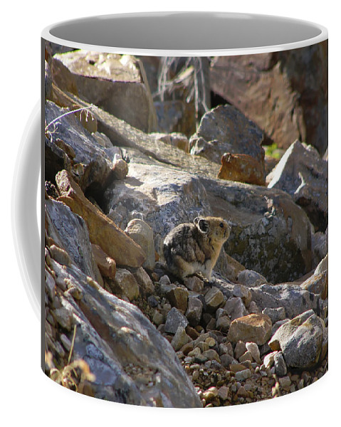 Nature Coffee Mug featuring the photograph Pika by Rhonda McDougall