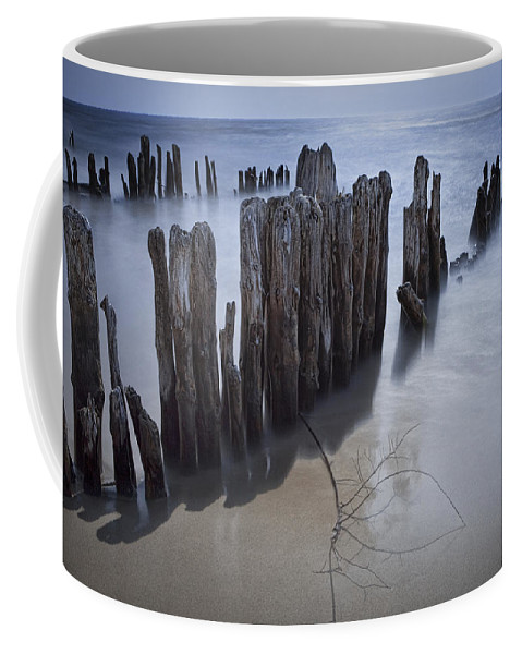 Art Coffee Mug featuring the photograph Pilings On The Beach Along A Lake Michigan Shore by Randall Nyhof