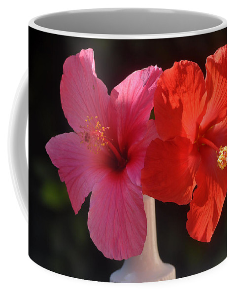 Flowers Coffee Mug featuring the photograph Pink And Red Hibiscus by Jay Milo