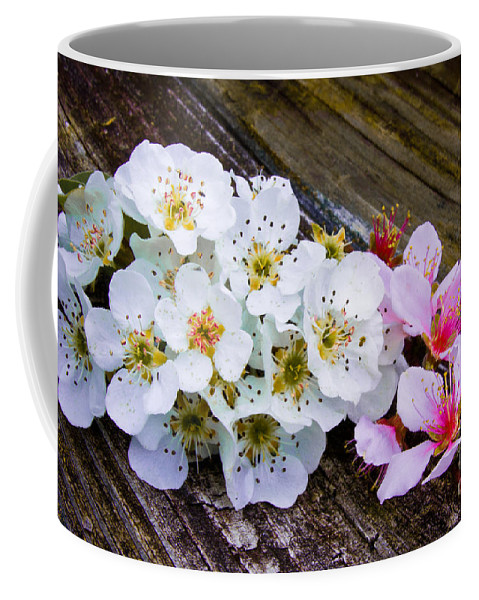 Pink Coffee Mug featuring the photograph Pink And White 2 by Scott Hervieux