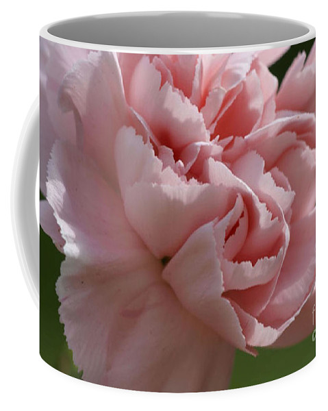 Pink Coffee Mug featuring the photograph Pink Carnation by Carol Lynch