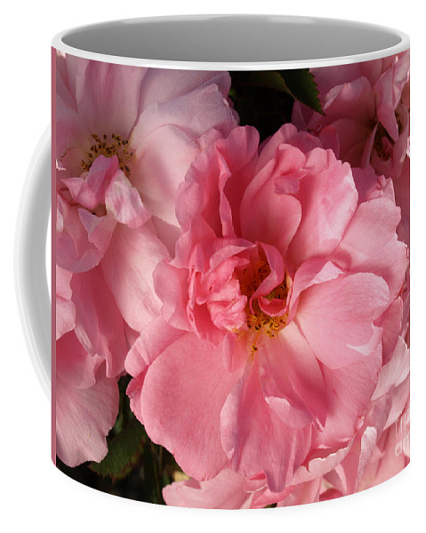 Pink Coffee Mug featuring the photograph Pink Cluster by Jacklyn Duryea Fraizer