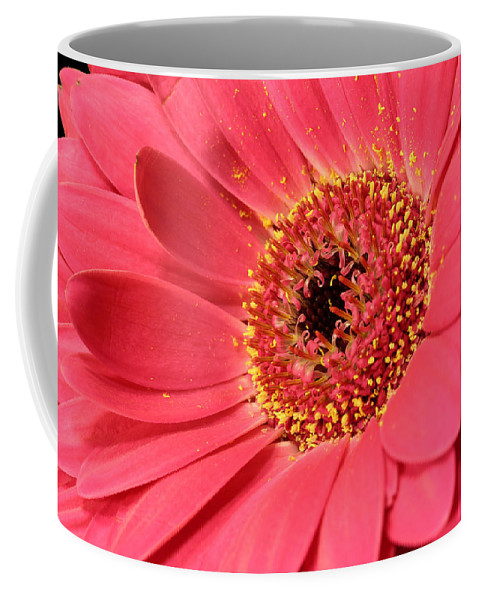 Abloom Coffee Mug featuring the photograph Pink Daisy by Paul Fell