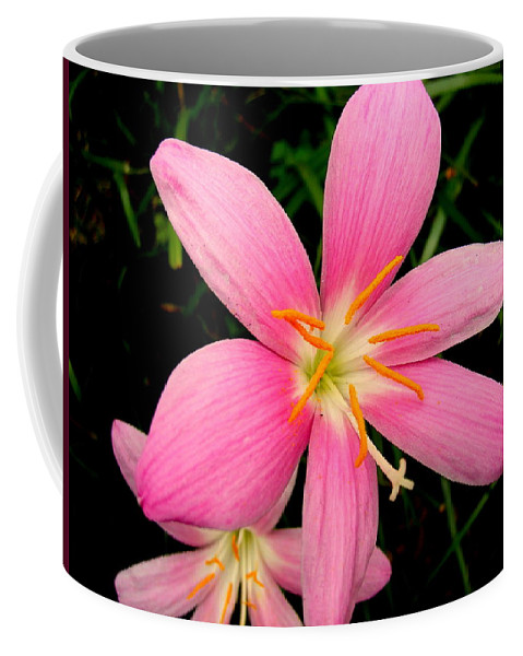 Pink Coffee Mug featuring the photograph Pink Day Lily by Cynthia Amaral