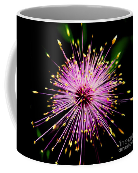 Pink Coffee Mug featuring the photograph Pink Fireworks by Savannah Gibbs