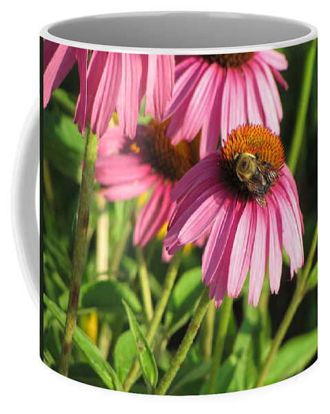Flower Coffee Mug featuring the photograph Pink Flower And Bee by Anita Burgermeister