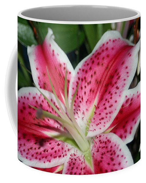 Daylily Coffee Mug featuring the photograph Pink Lily by Lesa Fine