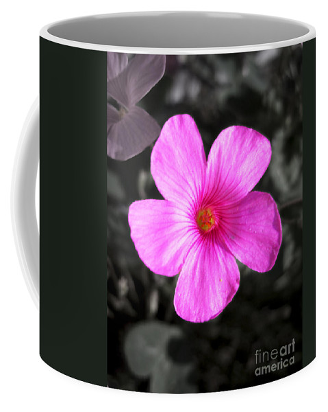 Flower Coffee Mug featuring the photograph Pink Phlox by Nina Ficur Feenan