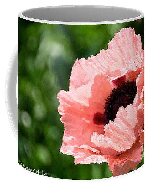 Flower Coffee Mug featuring the photograph Pink Poppy Today by Susan Herber