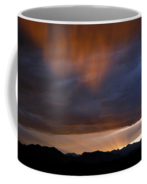 Pink Coffee Mug featuring the photograph Pink Rain 1 by Marilyn Hunt