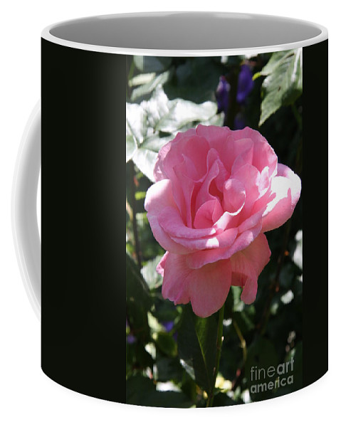 Rose Coffee Mug featuring the photograph Pink Rose by Christiane Schulze Art And Photography