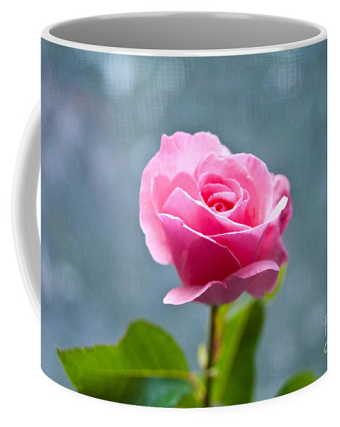 Pink Rose Coffee Mug featuring the photograph Pink Rose by Steven Dunn