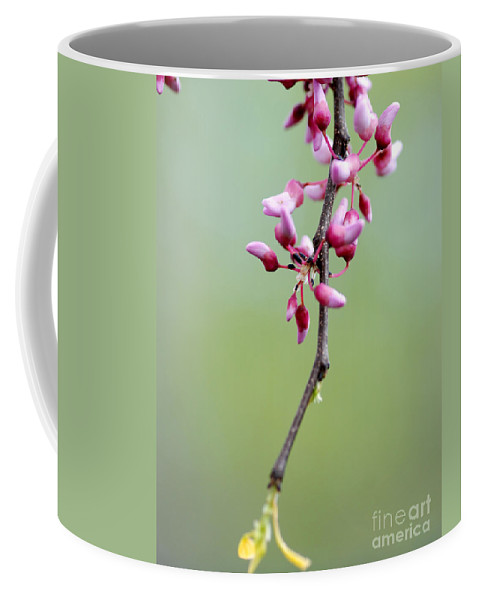 Pink Flowers Coffee Mug featuring the photograph Pink Tree Flower Buds by Optical Playground By MP Ray