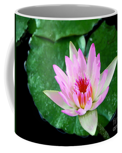 David Lawson Photography Coffee Mug featuring the photograph Pink Waterlily Flower by David Lawson