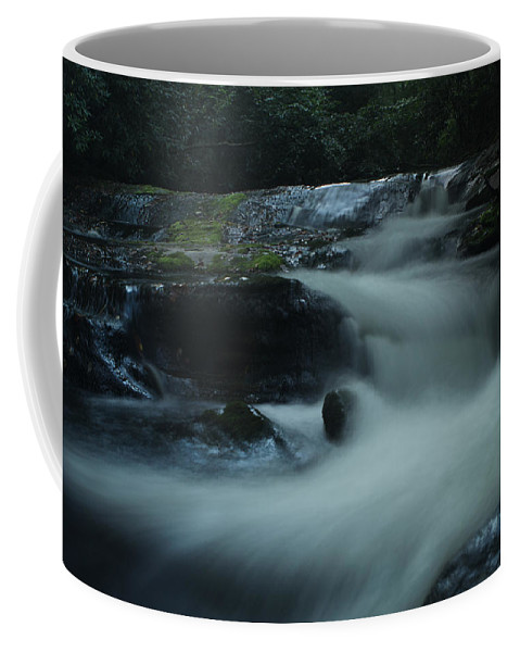 Pisgah National Forest Coffee Mug featuring the photograph Pisgah National Forest by Jessica Brawley