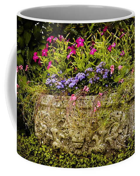 Blue Coffee Mug featuring the photograph Planter by Mark Llewellyn