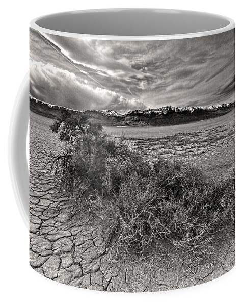 Plants On The Alvord Desert Coffee Mug featuring the photograph Plants On The Alvord Desert by Wes and Dotty Weber