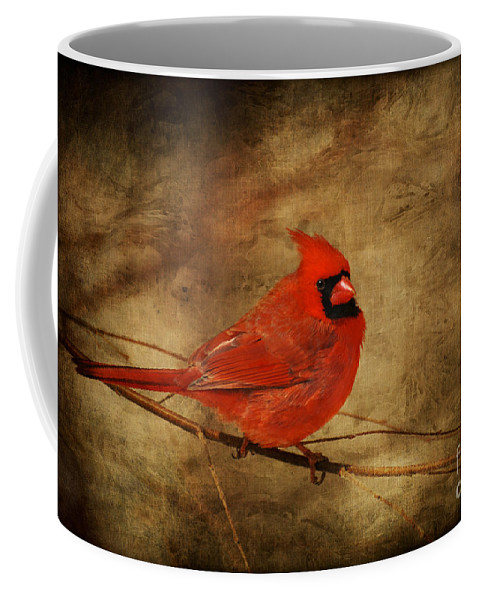 Bird Coffee Mug featuring the photograph Please Feed The Birds by Lois Bryan