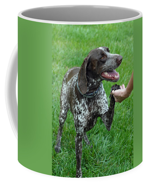 Animals Coffee Mug featuring the photograph Pleased To Meet You by Lisa Phillips