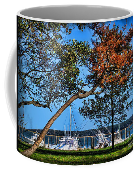 Atlantic Coffee Mug featuring the photograph Plymouth Harbor In Autumn by Joan Minchak