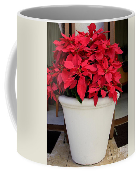 Poinsettia Coffee Mug featuring the photograph Poinsettias In A Planter by Mary Deal