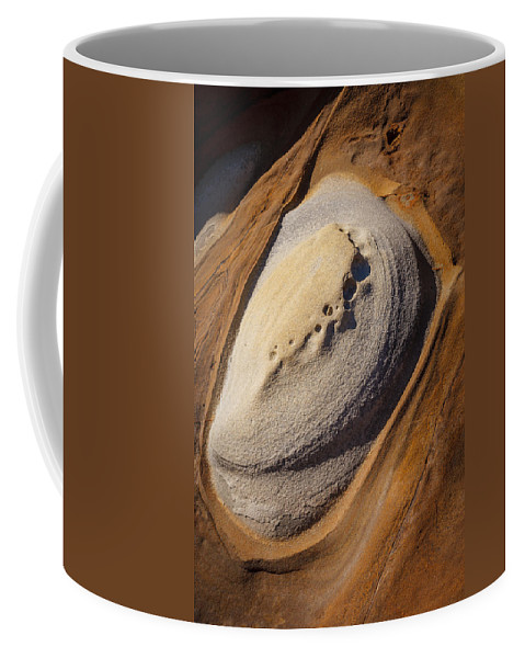 Copyrighted Coffee Mug featuring the photograph Point Lobos Abstract 2 by Mike Penney