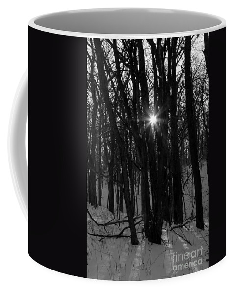 Sun Coffee Mug featuring the photograph Point Of Light In Black And White by Rick Rauzi