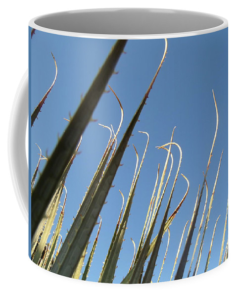 David S Reynolds Coffee Mug featuring the photograph Pointy by David S Reynolds