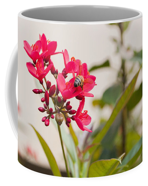 Nature Coffee Mug featuring the photograph Polen Gathering Bee by Csaba Friss