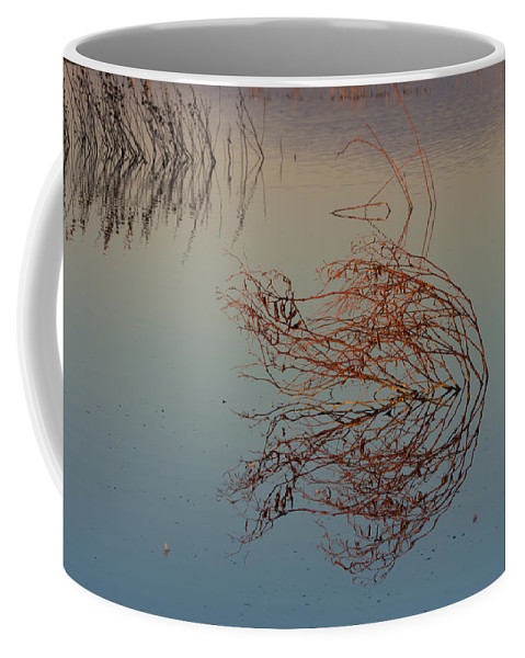 Golden Reflections Coffee Mug featuring the photograph Pond Weed Reflections by Kathleen Bishop