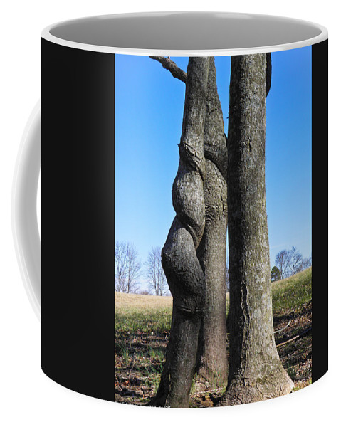 Tree Coffee Mug featuring the photograph Poor Twisted Tree by Nick Kirby