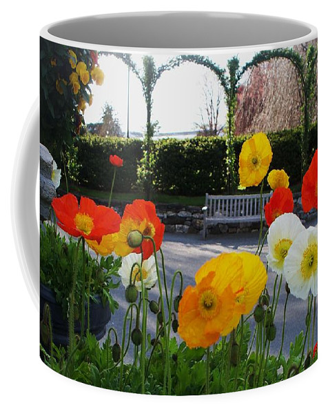 Poppies Coffee Mug featuring the photograph Poppies by Eric Schiabor