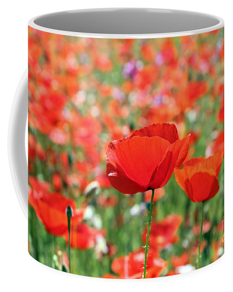 Poppy Poppies Field Coffee Mug featuring the photograph Poppies by Julia Gavin