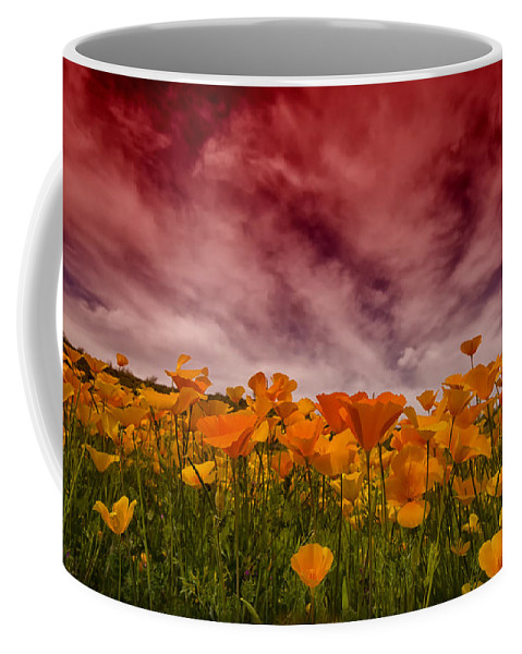 Mexican Poppies Coffee Mug featuring the photograph Poppy Fields Forever by Saija Lehtonen